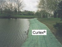 Bio_Options_Curlex_along_shore_(g)_medium