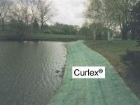 Bio_Options_Curlex_along_shore_(g)_medium