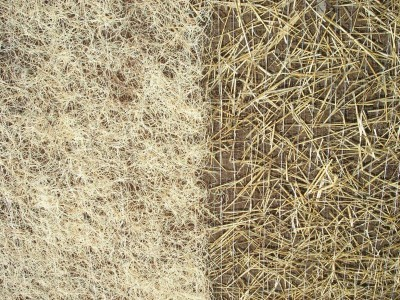 Curlex_CL_Page_Curlex_CL_I_and_SN_Straw_Side-by-Side_large